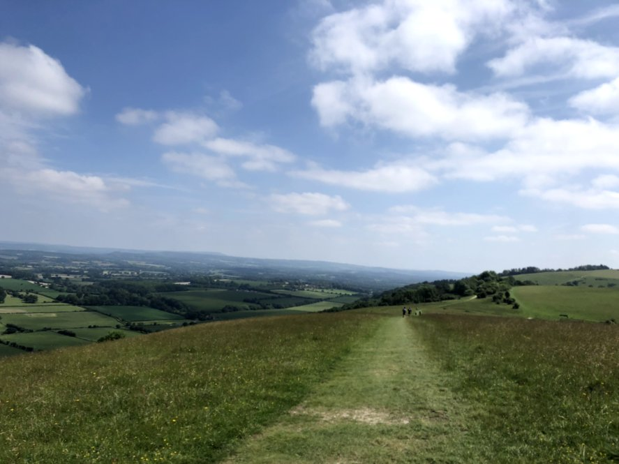SOUTH DOWNS WAY 100 – RACE REPORT